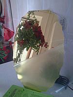 Акриловое зеркало, размером 27*42 см, овальное с зубчиками, золото, толщиной 0,8 мм
