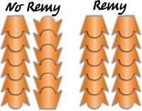 Что значит Remy ?