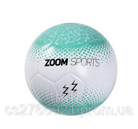 Мяч футзал ZoomSports PAWA, фото 2