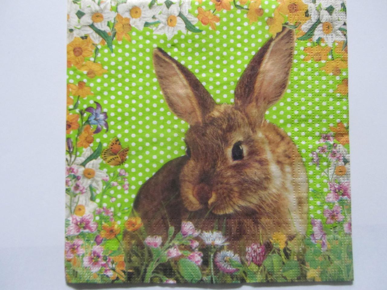 "Салфетка для декупажа ""Кролик"" 33х33 см, 5"