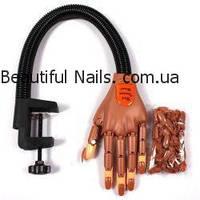 Тренировочная рука Nail trainer для наращивания и моделирования ногтей, фото 1