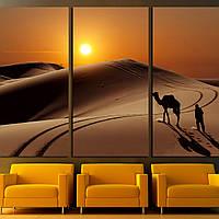 Картина -  Верблюд с пастухом в пустыне Сахара, Марокко, для декора спальни