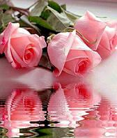 Алмазна вишивка на підрамнику Рози у воді 50 х 40 см (арт. TN072)