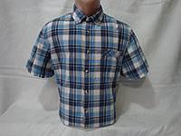 Мужская рубашка с коротким рукавом в клетку Canda, фото 1