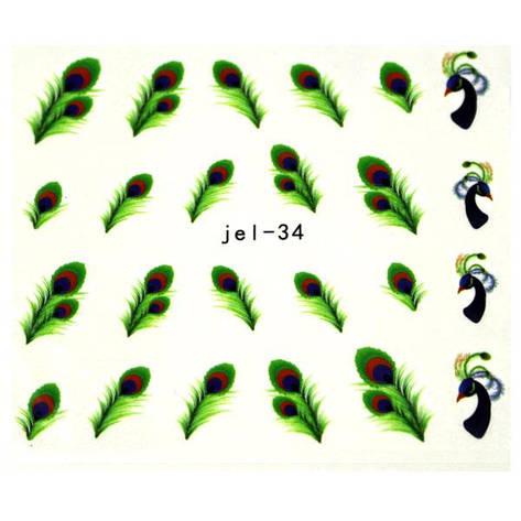 KATTi Наклейки водные JEL 034 цв перья, фото 2