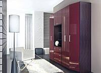 Шкаф распашной трехдверный