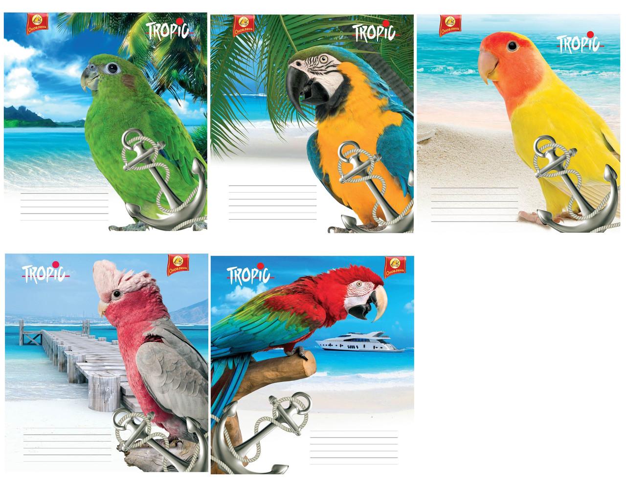 18 линия ТВ 82270 Попугай, 20 шт. в упаковке.