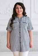 Женская хлопковая рубашка в клетку Армина белая / размер 56.58,60,62