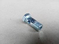 Болт-штуцер на ридроцилиндр поворота Ц-50 М16*1,5 , фото 1
