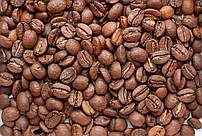 Кофе в зернах 100% арабика Бразилия Сантос 17/18 scr