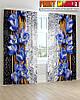 Фотошторы 3д синяя орхидея капли на стекле
