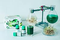 Сок Пшеницы Wheatgrass Premium 100% Bio Organic микрогрин проростки микрозелень зелень, фото 1