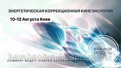 """10-12 августа Киев Базовый модуль. """"Энергетическая коррекционная кинезиология"""""""