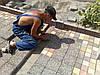 Укладка тротуарной плитки  Днепропетровск
