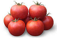 ХАЙД (КС 835) F1 / HAYD (KS 835) F1 — томат детерминантный, KitanoSeeds 500 семян