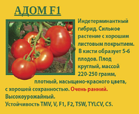 Томат АдомF1