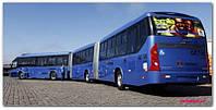 Автобусы больше 12 метров (гармошка)