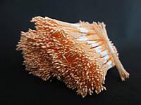 Тайские тычинки, ПЕРСИКОВЫЕ, мелкие на персиковой нити, 23-25 нитей, 50 головок