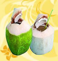Молодой кокосовый орех, 350 мл, Coco Bomb, Ме