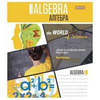 Тетрадь ПРЕДМЕТКА - АЛГЕБРА (World of Science)  761221 48 кл
