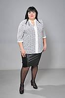 Блузка горох белая, фото 1