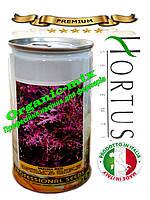 Салат Мизуна красная / Mizuno red ТМ «Hortus» (Италия), банка 500 грамм, семена