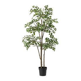 IKEA, FEJKA, Искусственн.оршечное растение, плачущий рис (30375158)(303.751.58) ФЕЙКА ИКЕА