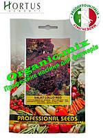 Салата Лолло Россо / Lollo Rosso ТМ «Hortus» (Италия), проф. пакет 50 грамм, фото 1
