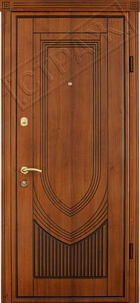 Входная дверь Страж standart Турин патина, фото 2