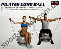 Мяч для фитнеса с эспандерами и надувной базой SOLEX