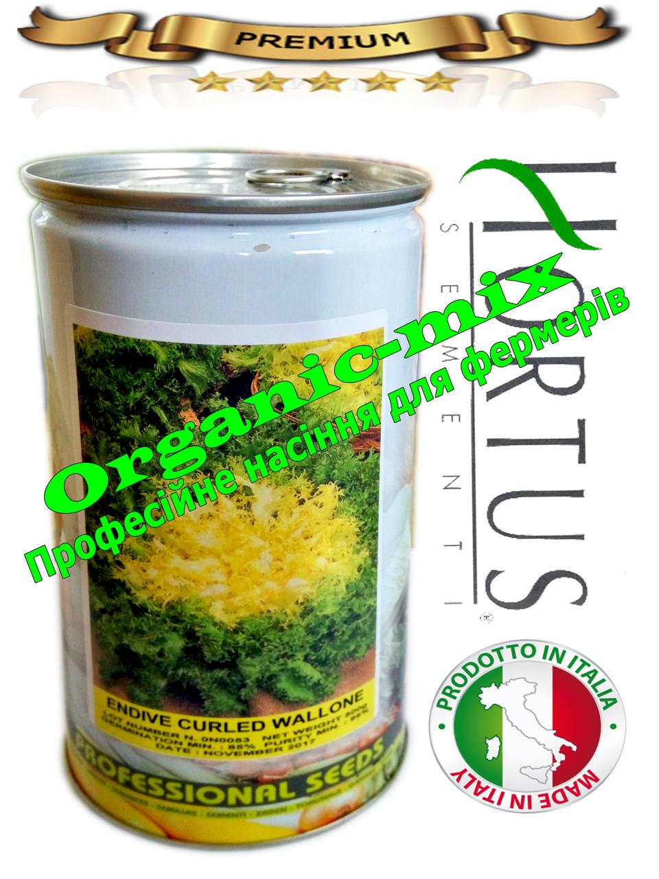 Салат Валоне (фризе,индивий) / ENDIVE CURLED WALLONE  (банка 500 грамм) Hortus Италия