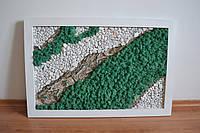 """Картина """"Кора і камені"""" з стабілізованого моху"""