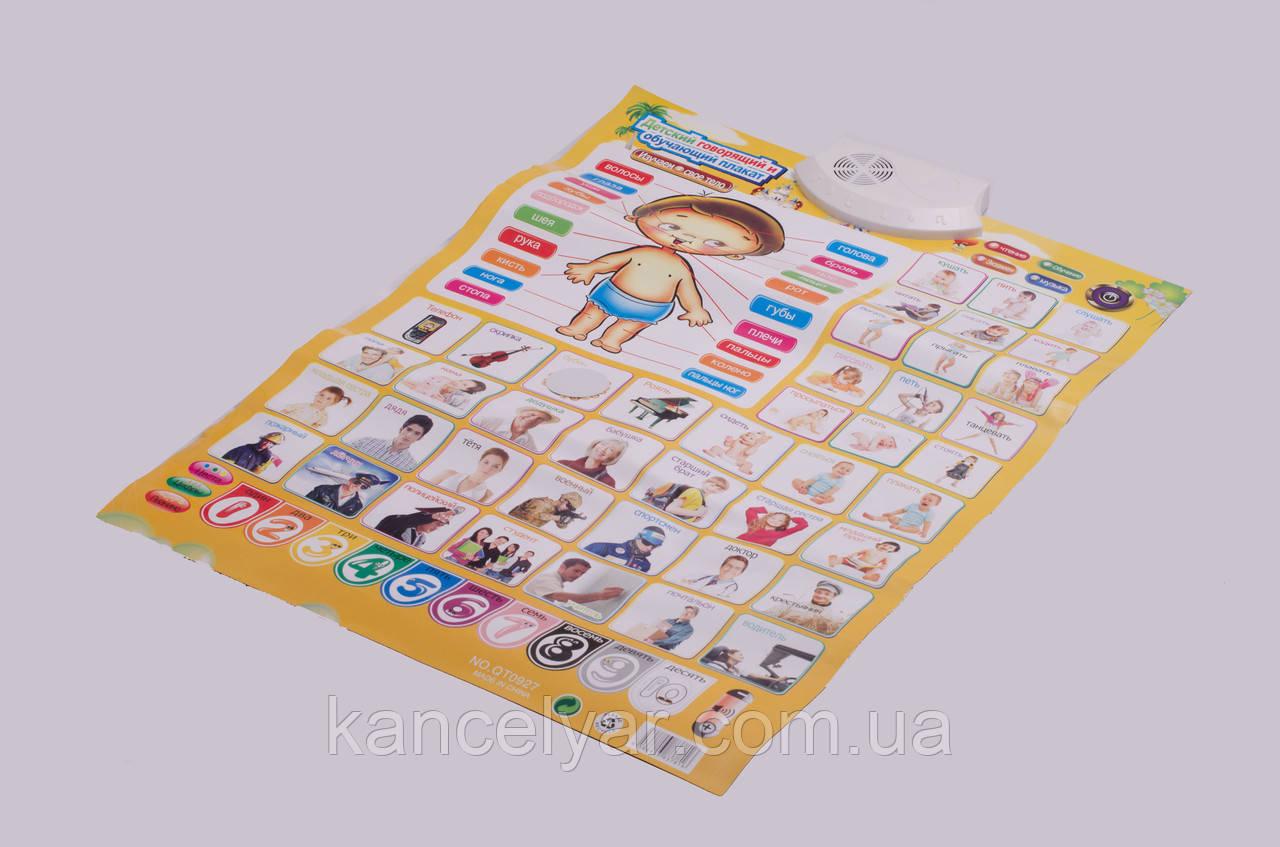 Плакат детский интерактивный