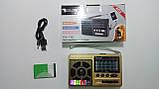 Радиоприемник многодиапазонный GOLON RX-181, FM/AM/SW(1-6), USB/microSD, mp3, аккумулятор Li-Ion 600mAh BL-5С, фото 9