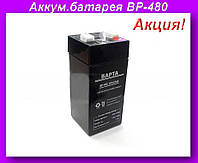 Аккумулятор для весов BP-480 4V4.5AH,Аккумуляторная батарея BP-480!Хит цена