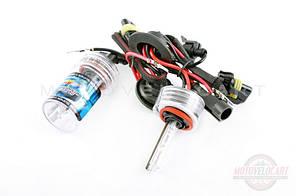 Лампы ксеноновые (пара)   H8 (12V 35W DC AMP)   5000K