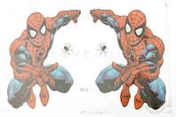 Наклейки (набор)   SPIDER MAN   (30х21см)   (#2673)