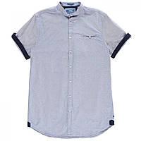 Рубашка D555 Dwight Oxford Short Sleeve Sky - Оригинал 98014b618be03