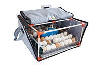 Инкубатор Micro 50 с автоматической регулировкой влажности и температуры, автомат. лотком переворота яиц