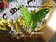 """Силиконовый коврик для гибкого айсинга """" Ажурные бабочки"""", фото 5"""