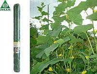 Сетка огуречная шпалерная Ортинет TENAX (Италия) зеленая 1,7х500 м, фото 1
