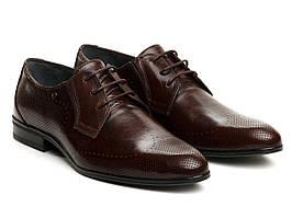 Броги Etor 12446-7170 42 коричневые
