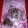 Щоденник шкільний Rachel Hale українська мова