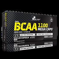 BCAA 1100 MEGA CAPS (120 Capsules)
