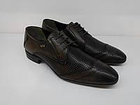 Броги  Etor 11736-7083-4900 42 коричневые, фото 1