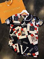 Футболка мужская в стиле Louis Vuitton Original, материал - 100% хлопок, с рисунком. код MP-1010