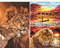 Картины по номерам в Ровно - набор из 3-х африканских сюжетов