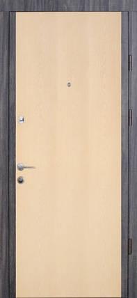 Входная дверь Страж standart Софья ПВХ, фото 2