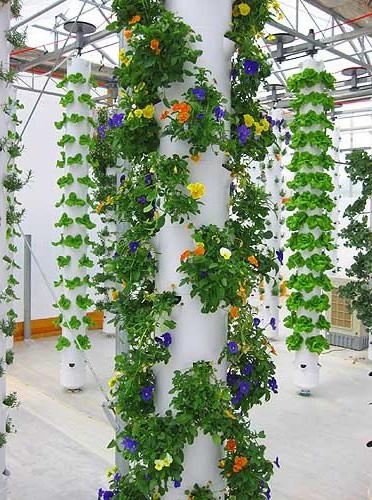 вертикальные грядки для цветов