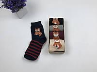 Носки набор Your Present Box женские - средние теплые - лиса (5 пар)
